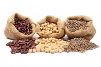 grains1